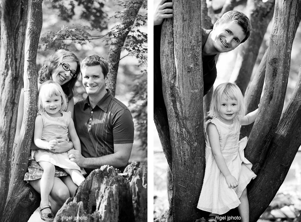 family-portrait-photography-seattle-young-couple-with-daughter-in-tree.jpg