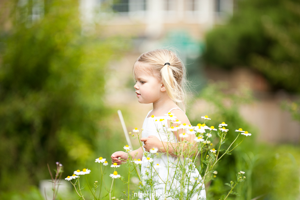 three-year-old-blond-girl-daisies-field.jpg