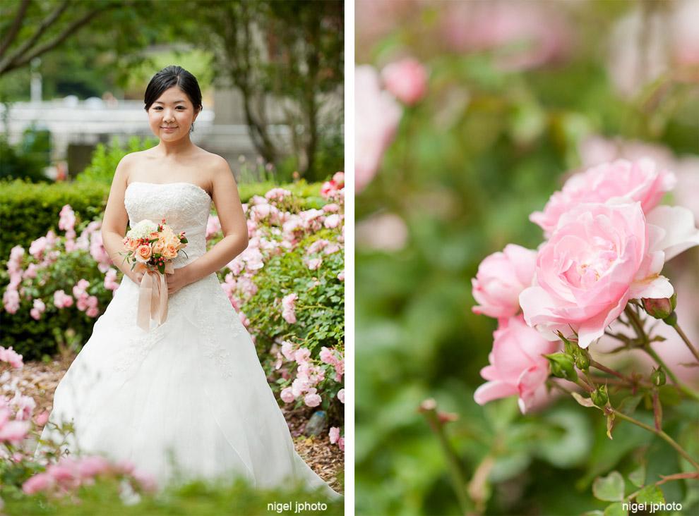young-bride-in-wedding-dress-pink-roses-garden.jpg