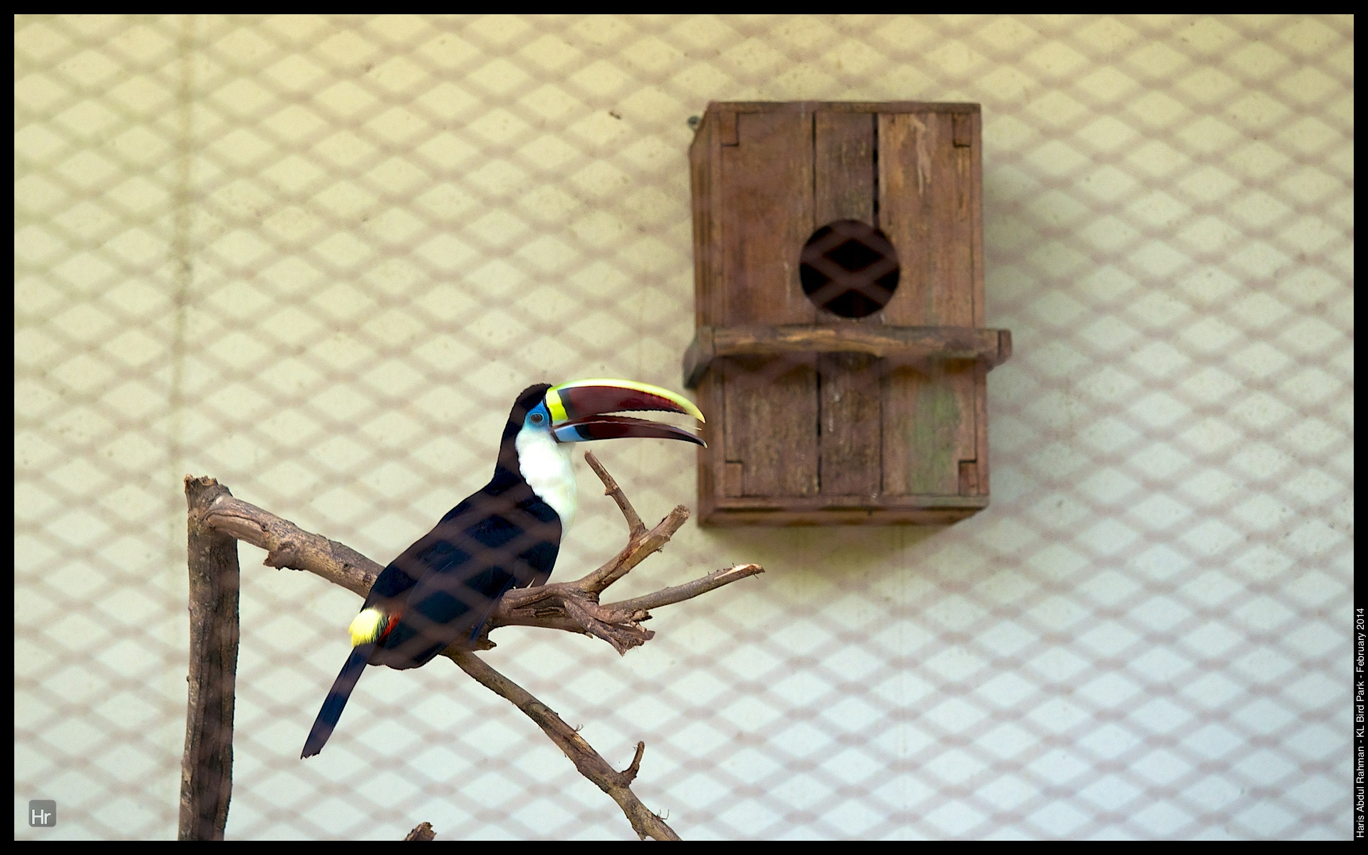 140223 KL Bird Park 7.jpg