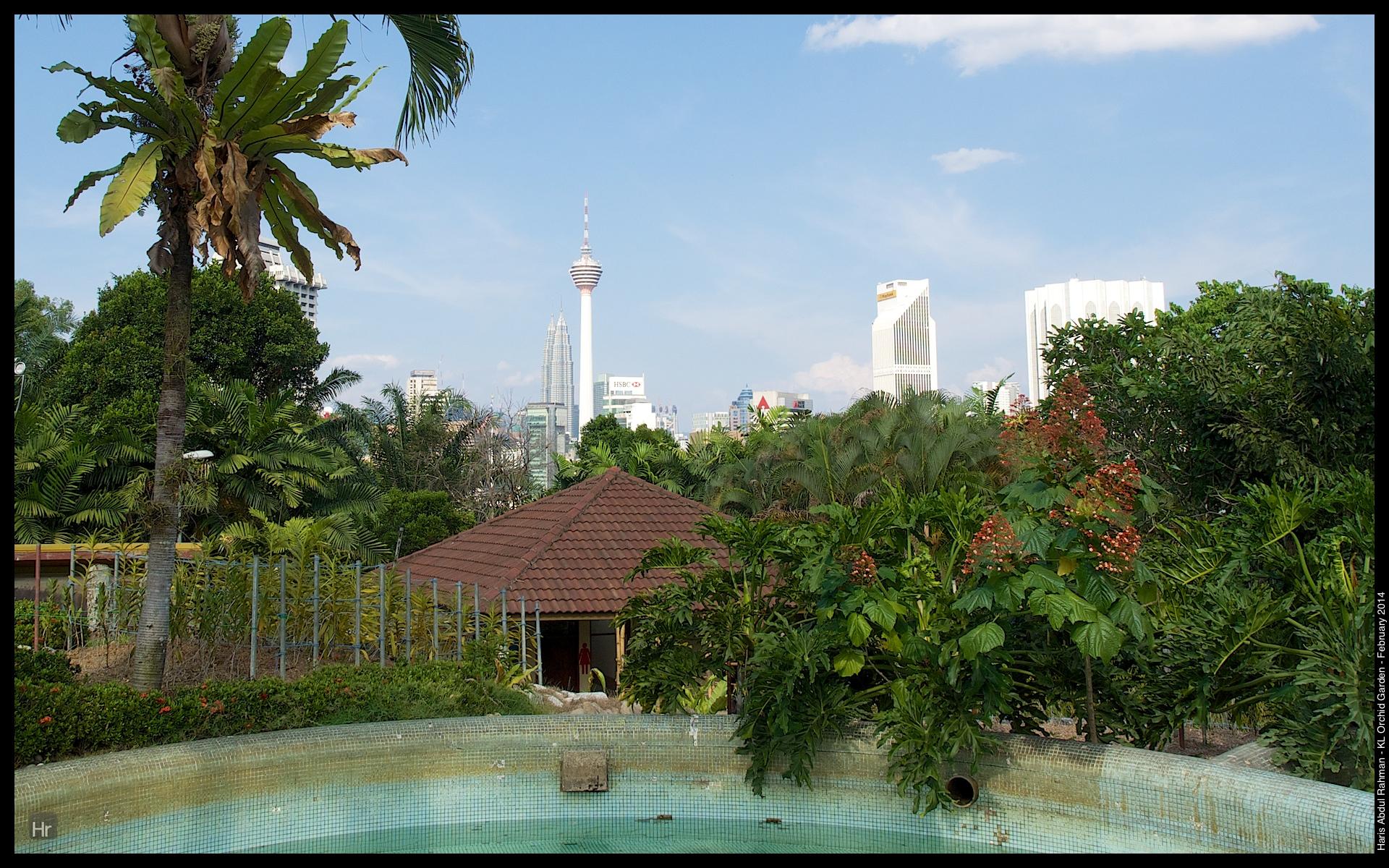 140223 Orchid Garden 5.jpg