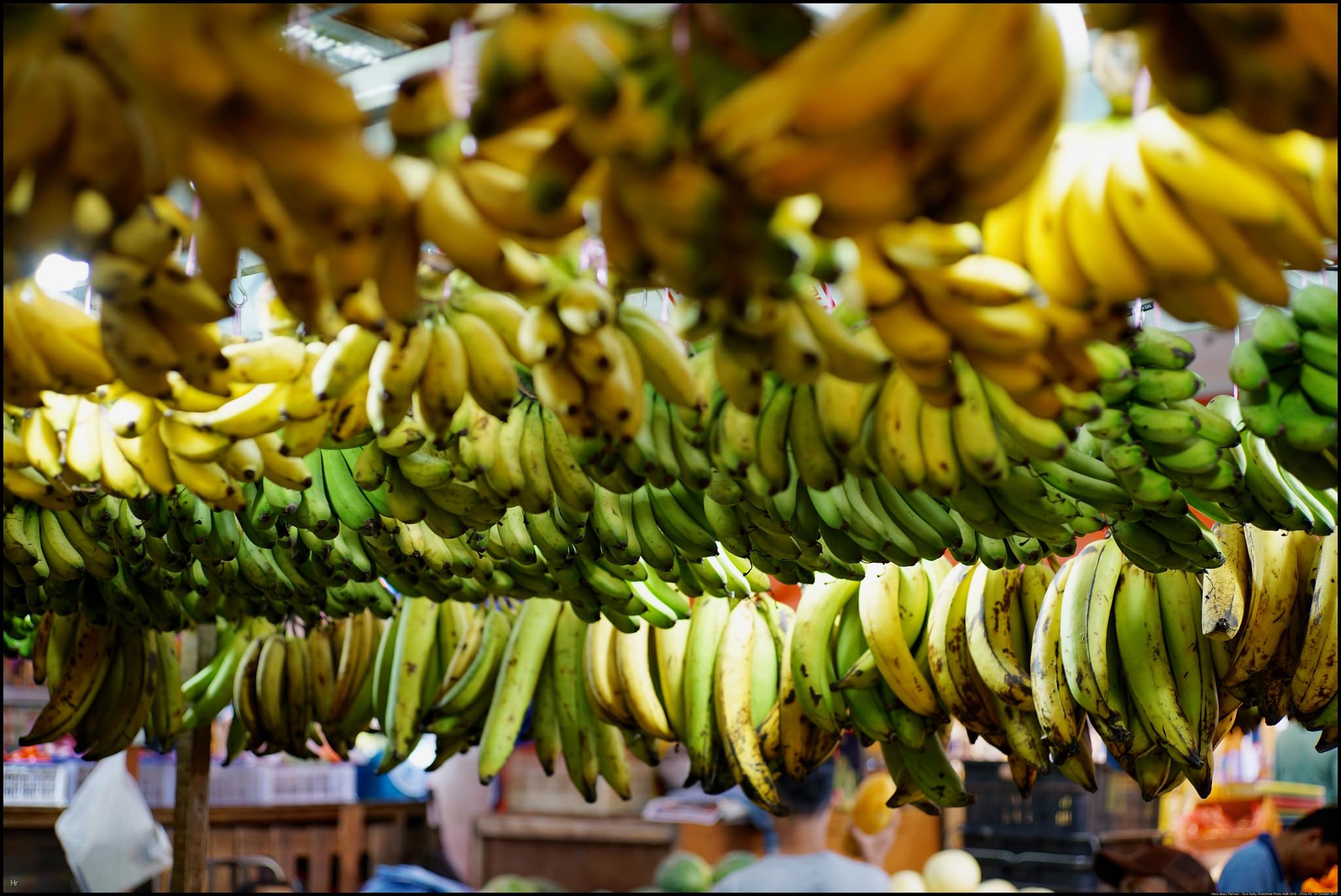 Low hanging fruits
