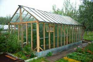 greenhouse_a8ab1bd7-1efc-4a47-a7e4-7e2ee73ef98e_grande.png
