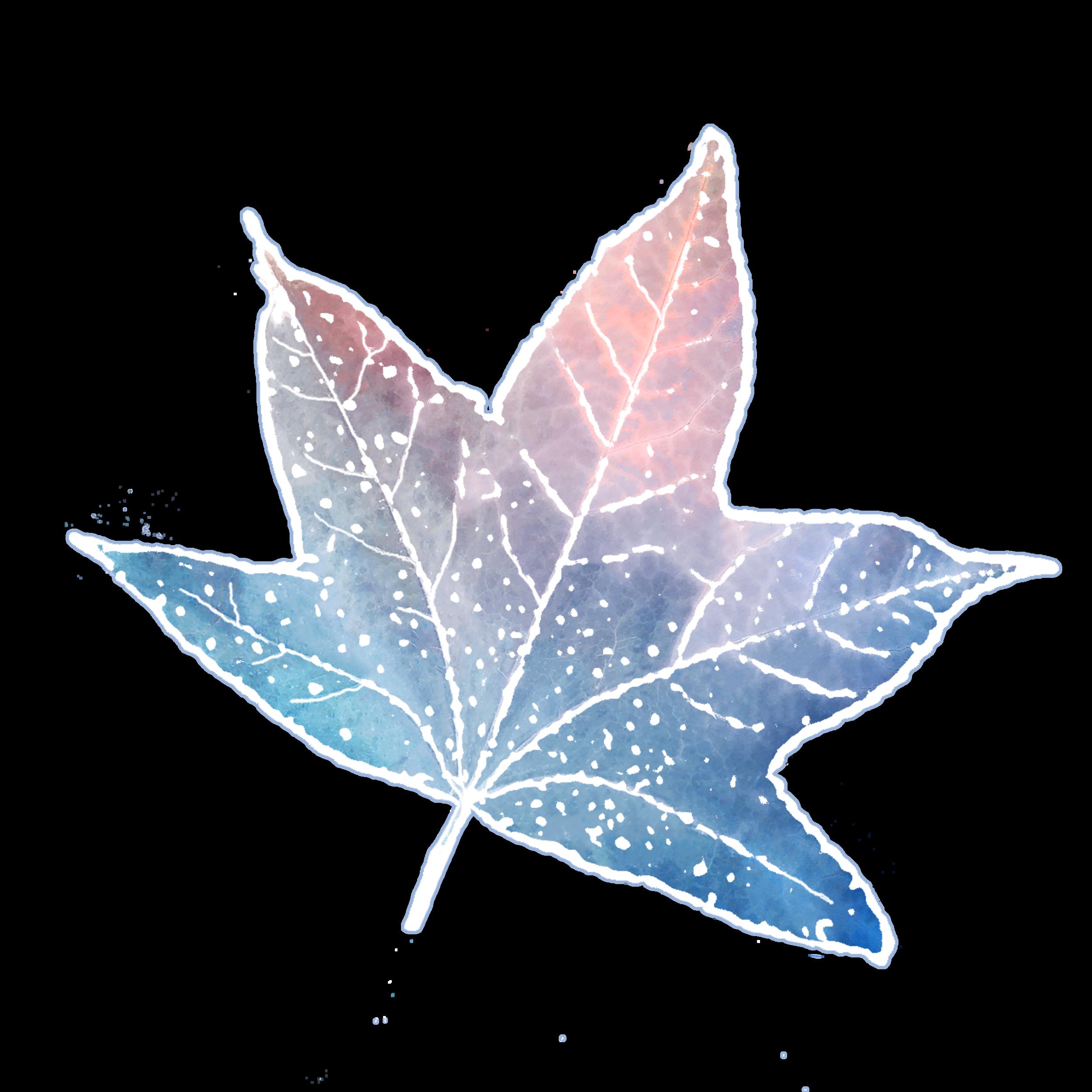 tallow leaf invert.png