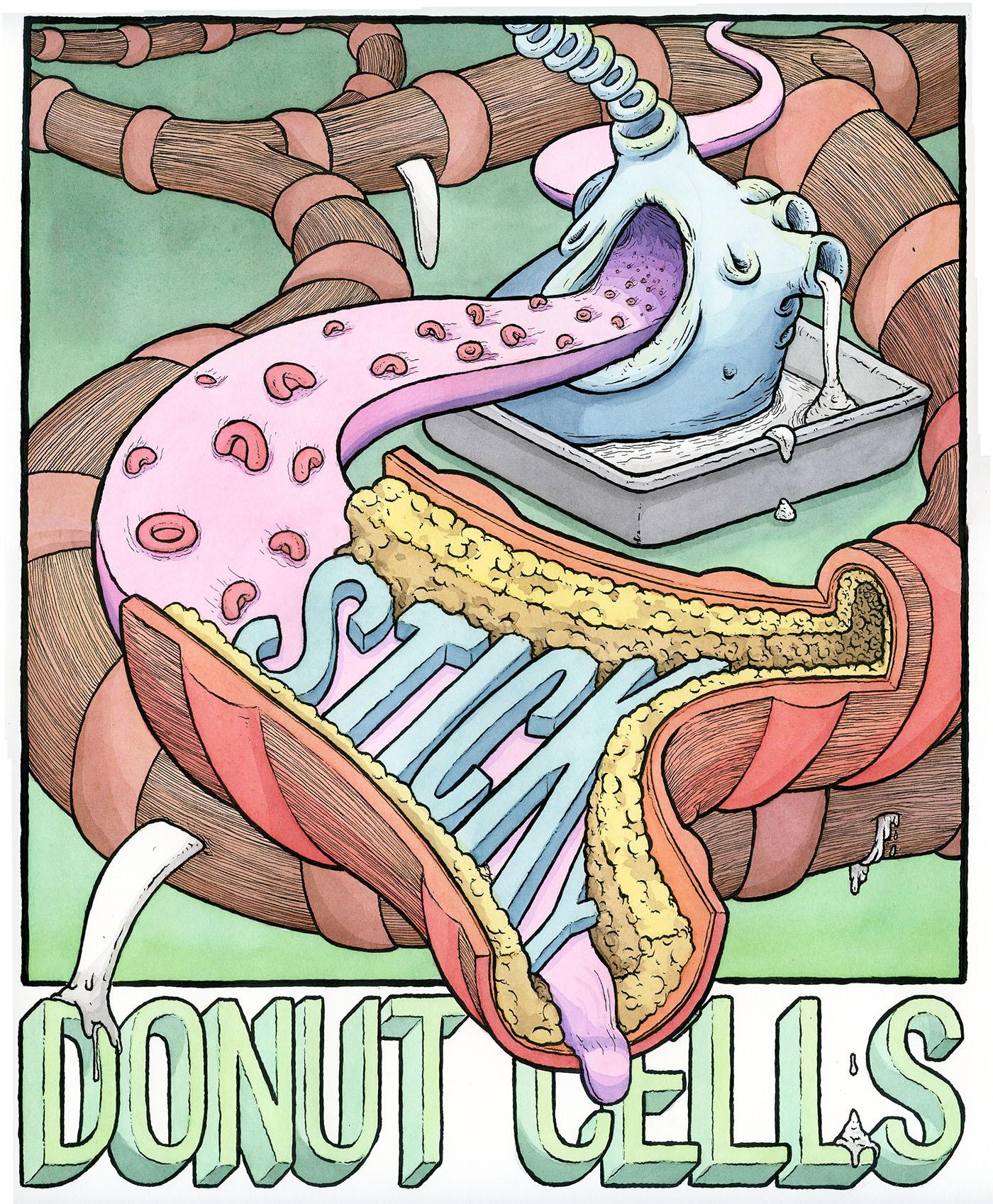 donutcells_color_web.jpg