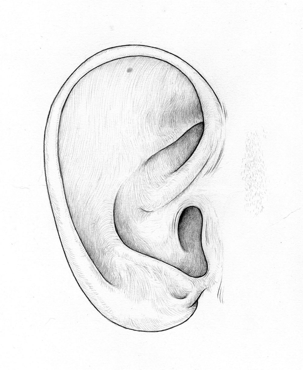 LJ ear.jpg