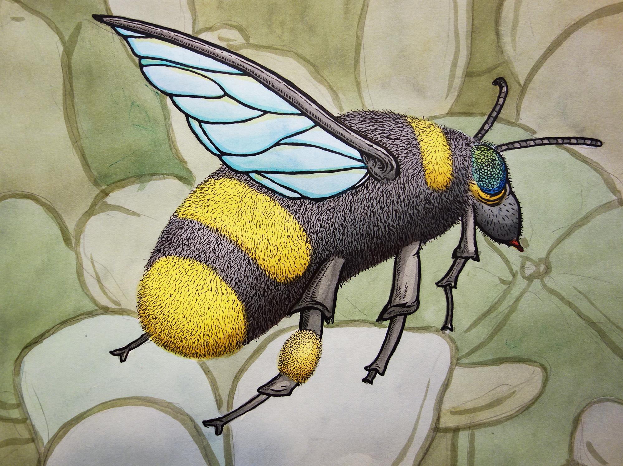 spin-wheel-bee-detail-web.jpg