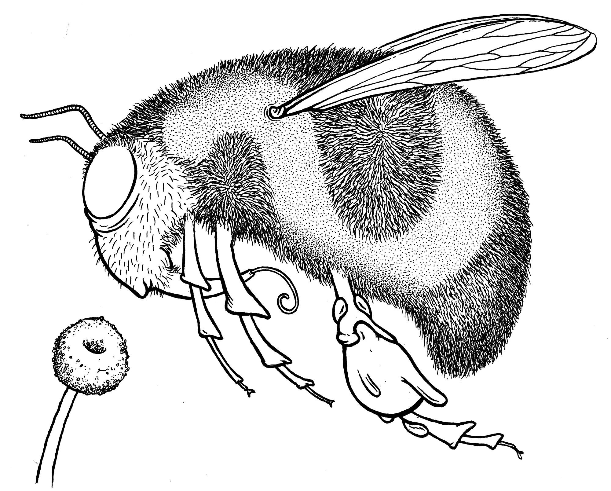 lisa-bee-ink-web.jpg