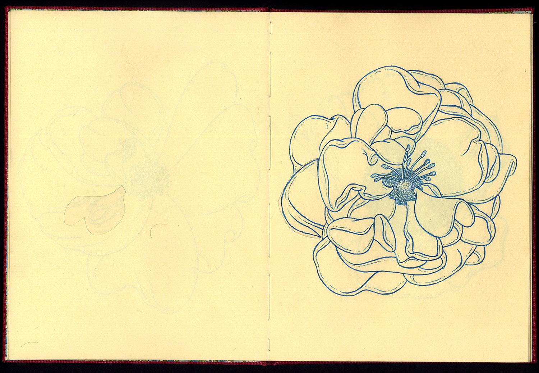 Phanerozoic Eon Page 4.jpg