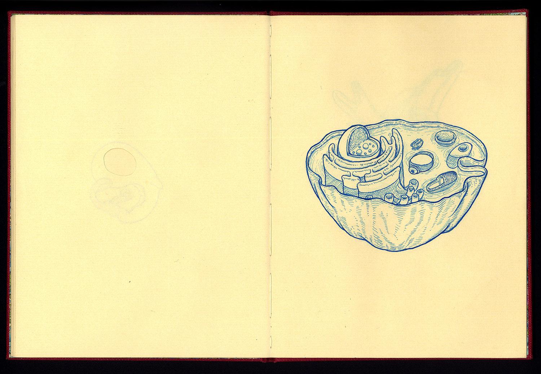 Phanerozoic Eon Page 12.jpg