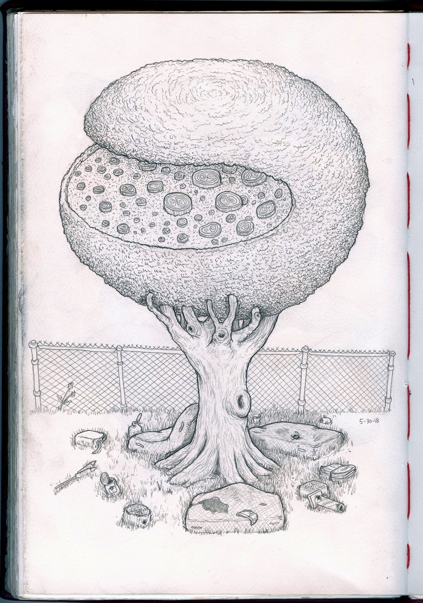 tree slice sketchbook-web.jpg