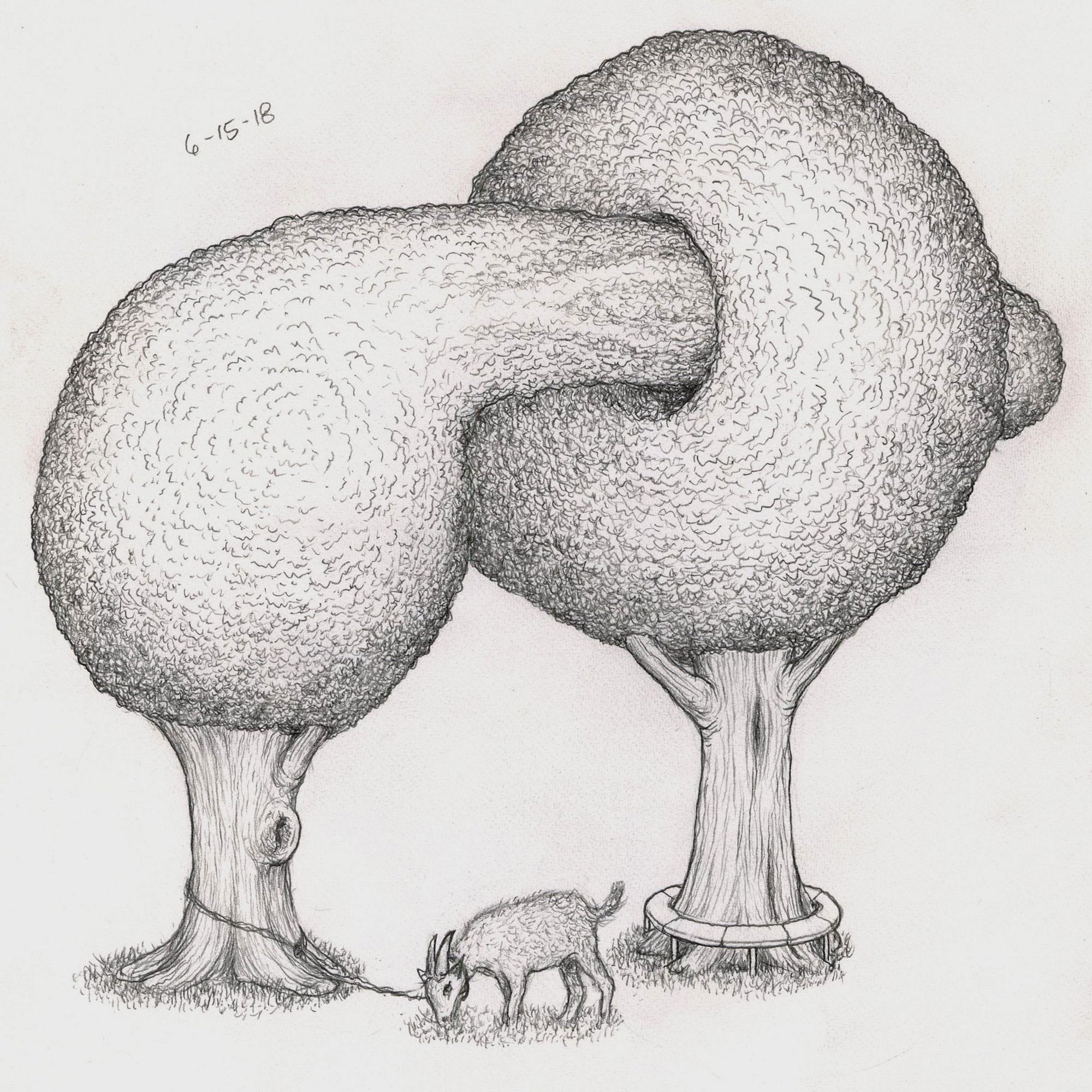 goat-trees.jpg