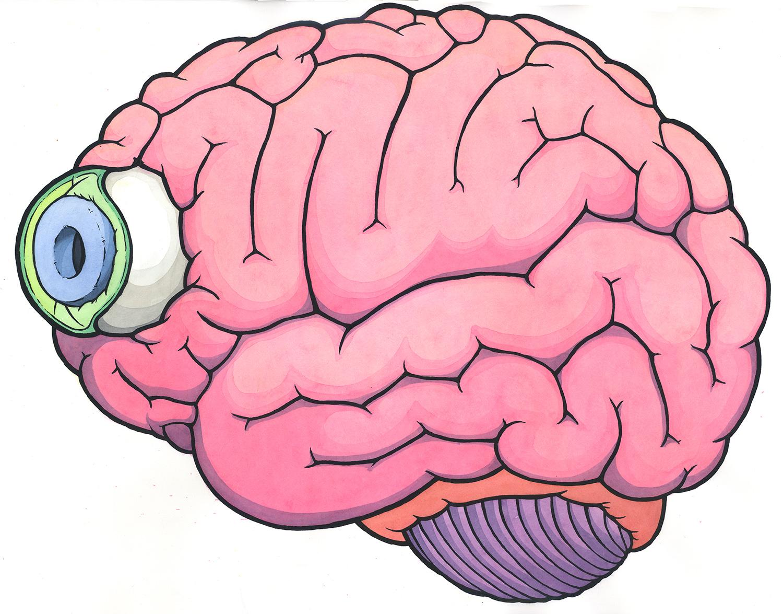 Brain-Eye color web.jpg