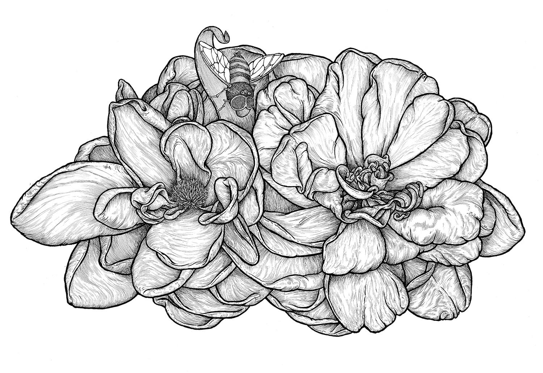 2+flowers.jpg