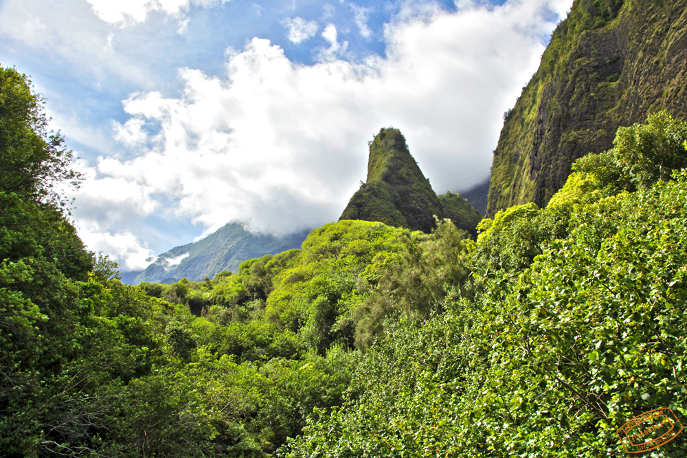 Kuka'emoku ('Iao Needle) Rises 1200 feet from the valley floor.