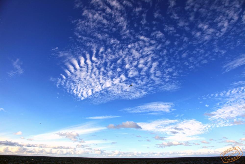The Beautiful Iceland Sky
