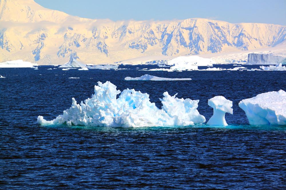 Dragon shaped Iceberg