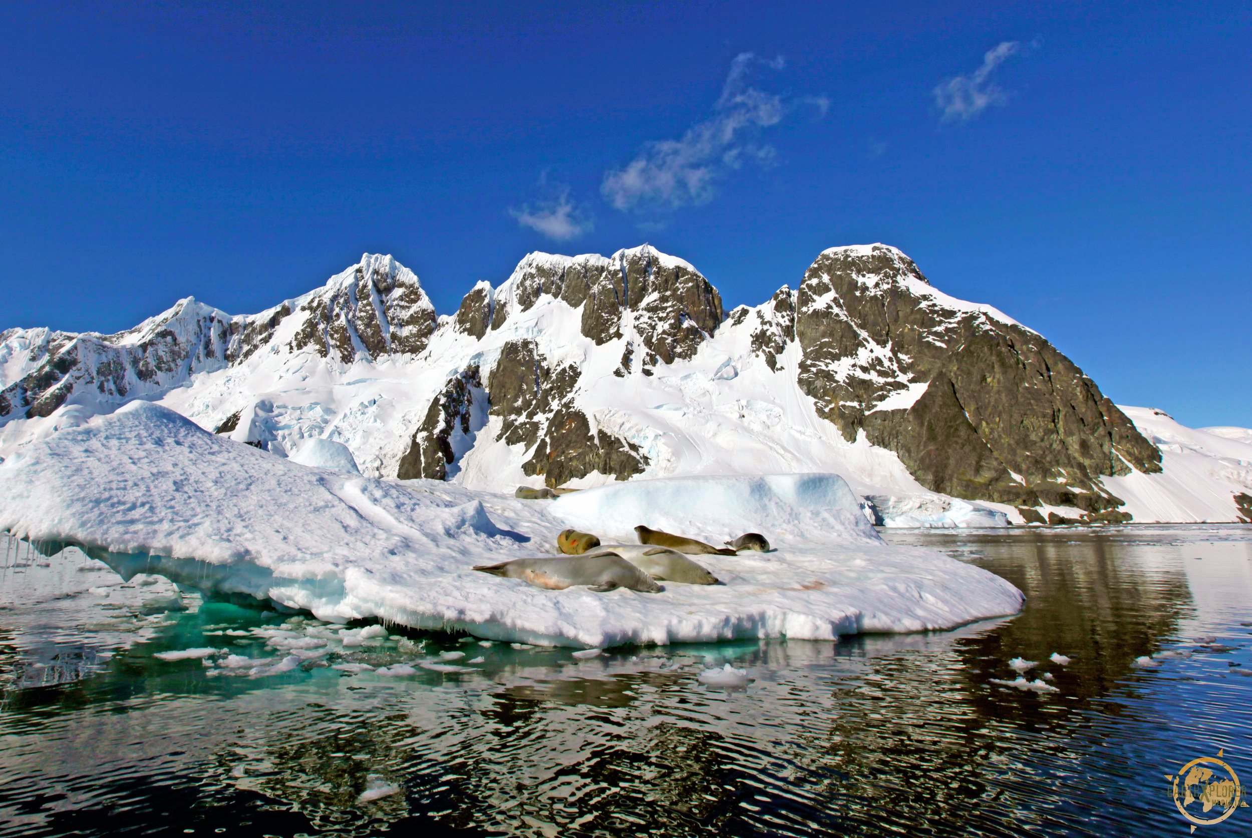 JD Andrews Antarctica.jpg