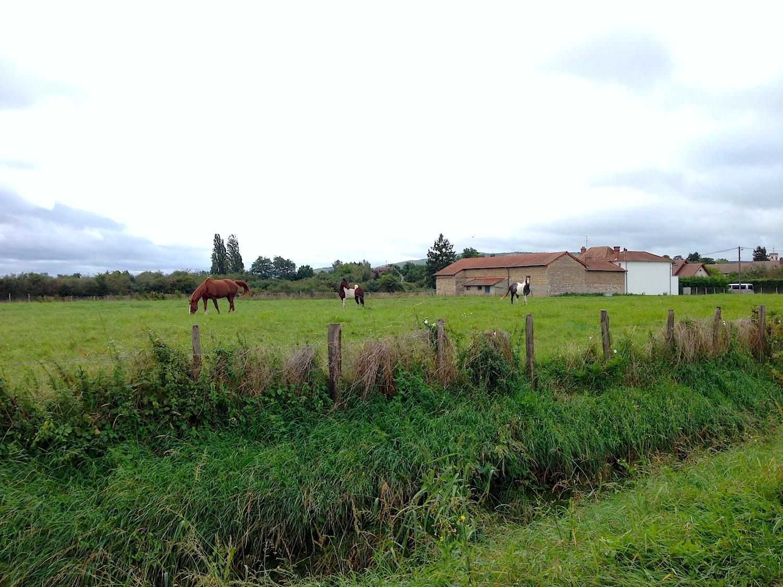 France Sights.jpg