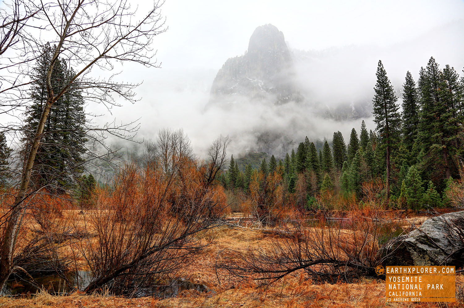 Foggy Day in Yosemite National Park