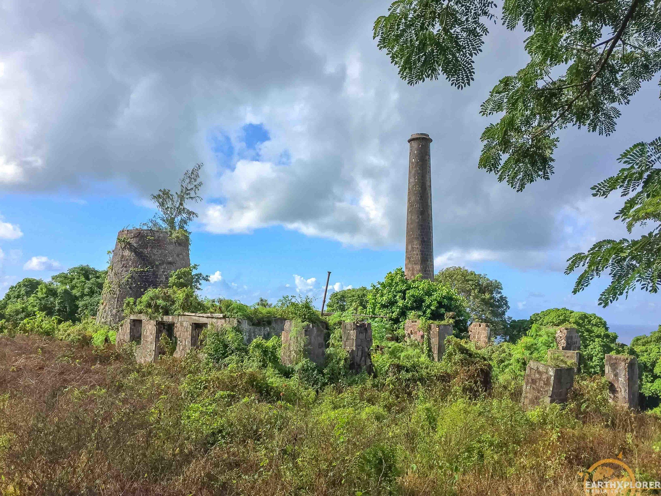 Hamilton Plantation Nevis earthXplorer.jpg