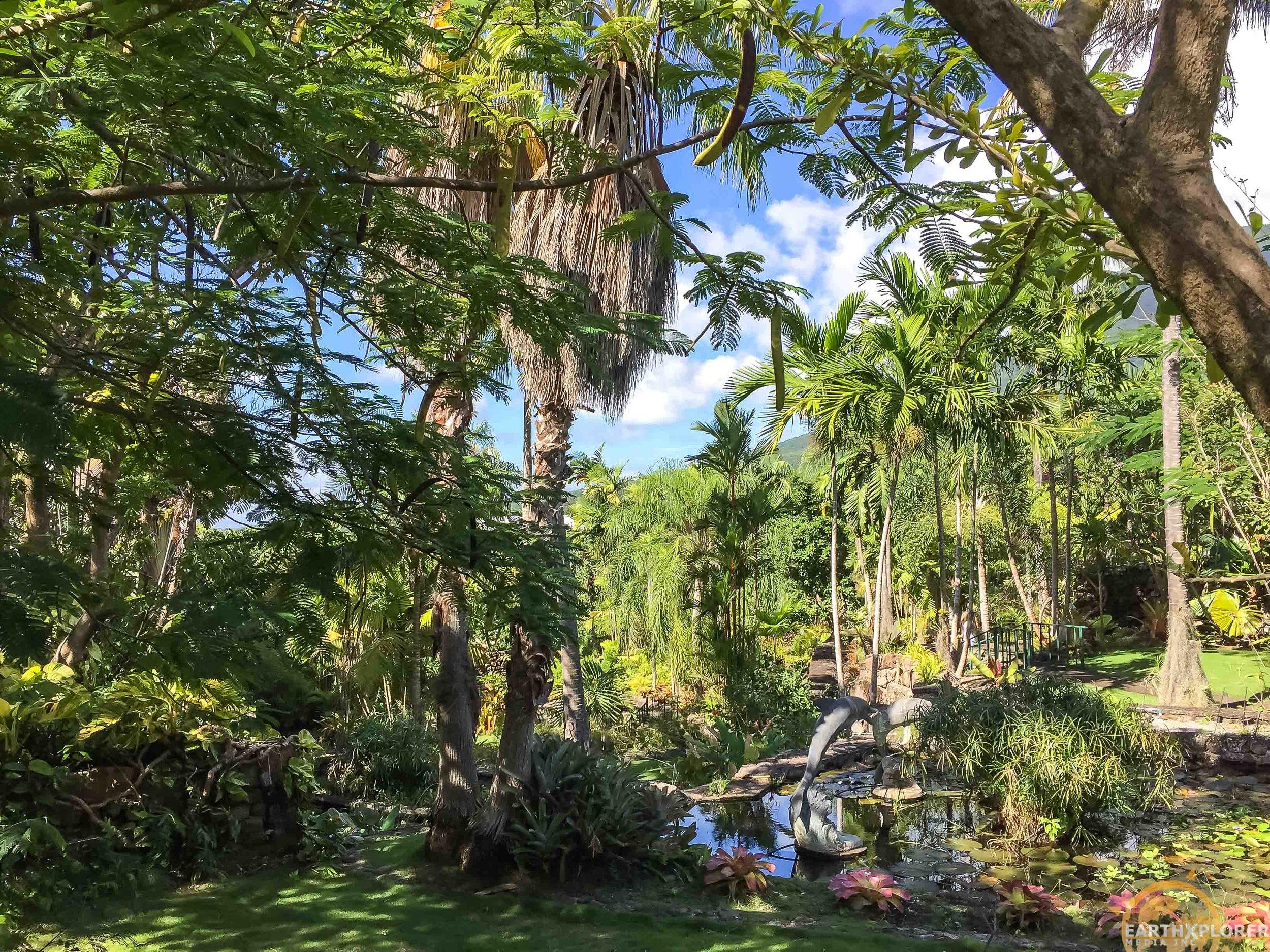 Nevis Botanical Gardens earthXplorer-9.jpg