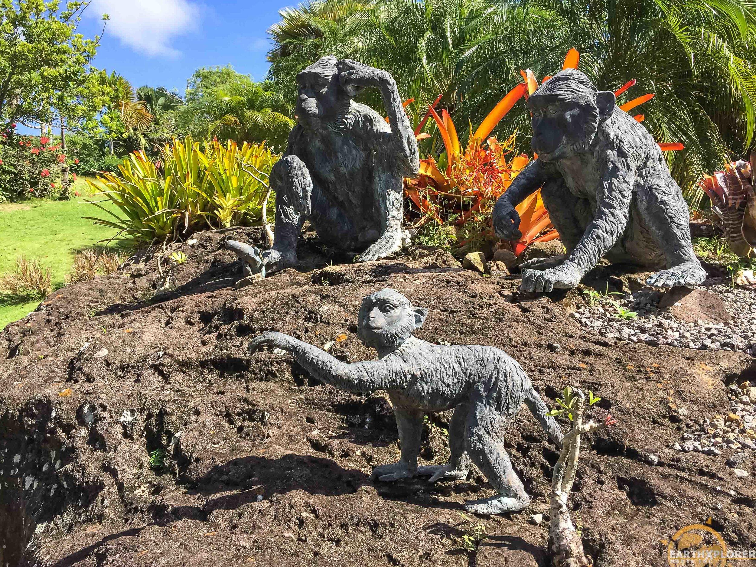 Nevis Botanical Gardens earthXplorer-3.jpg