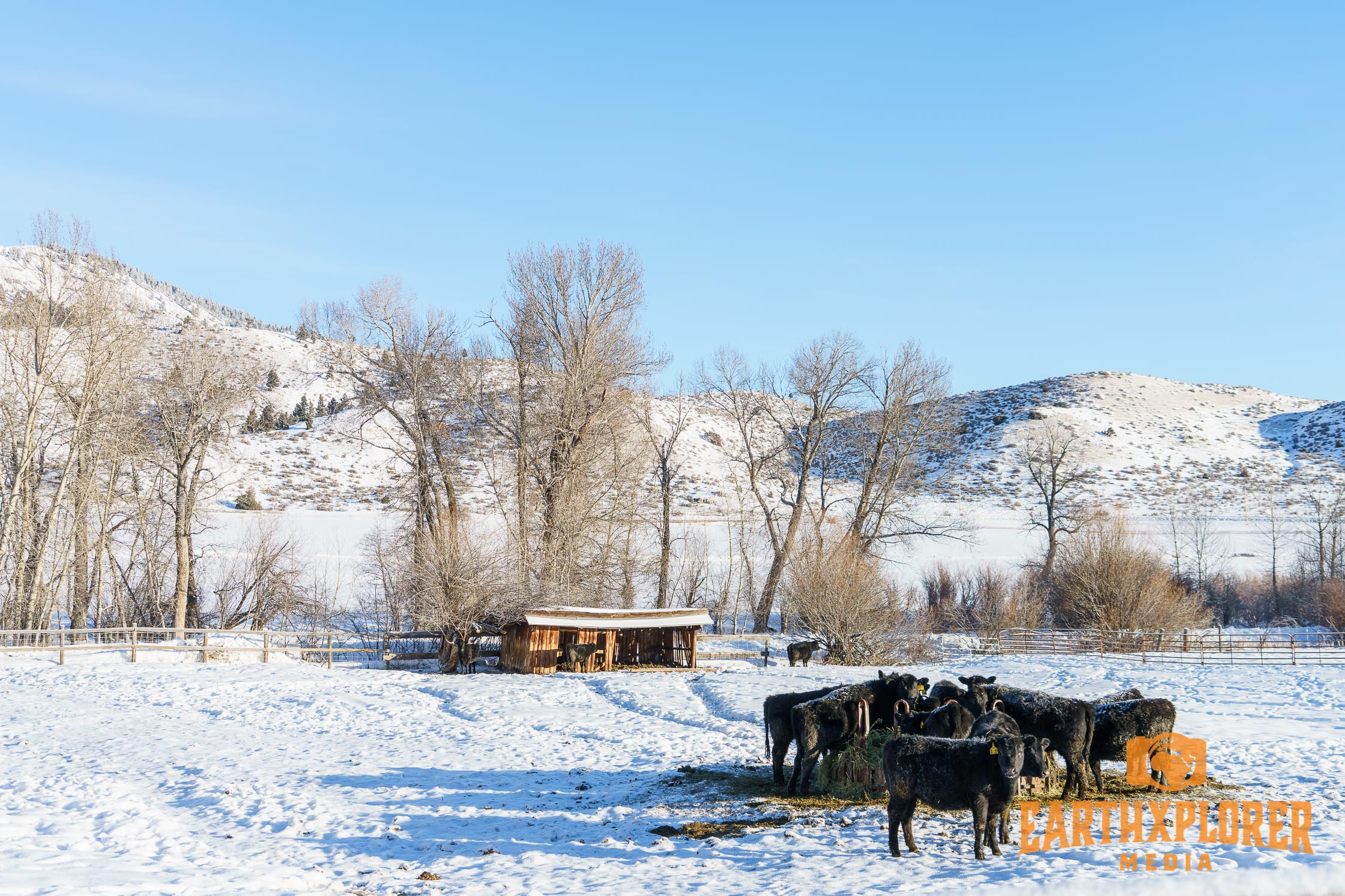 G Bar M Ranch Montana-19.jpg