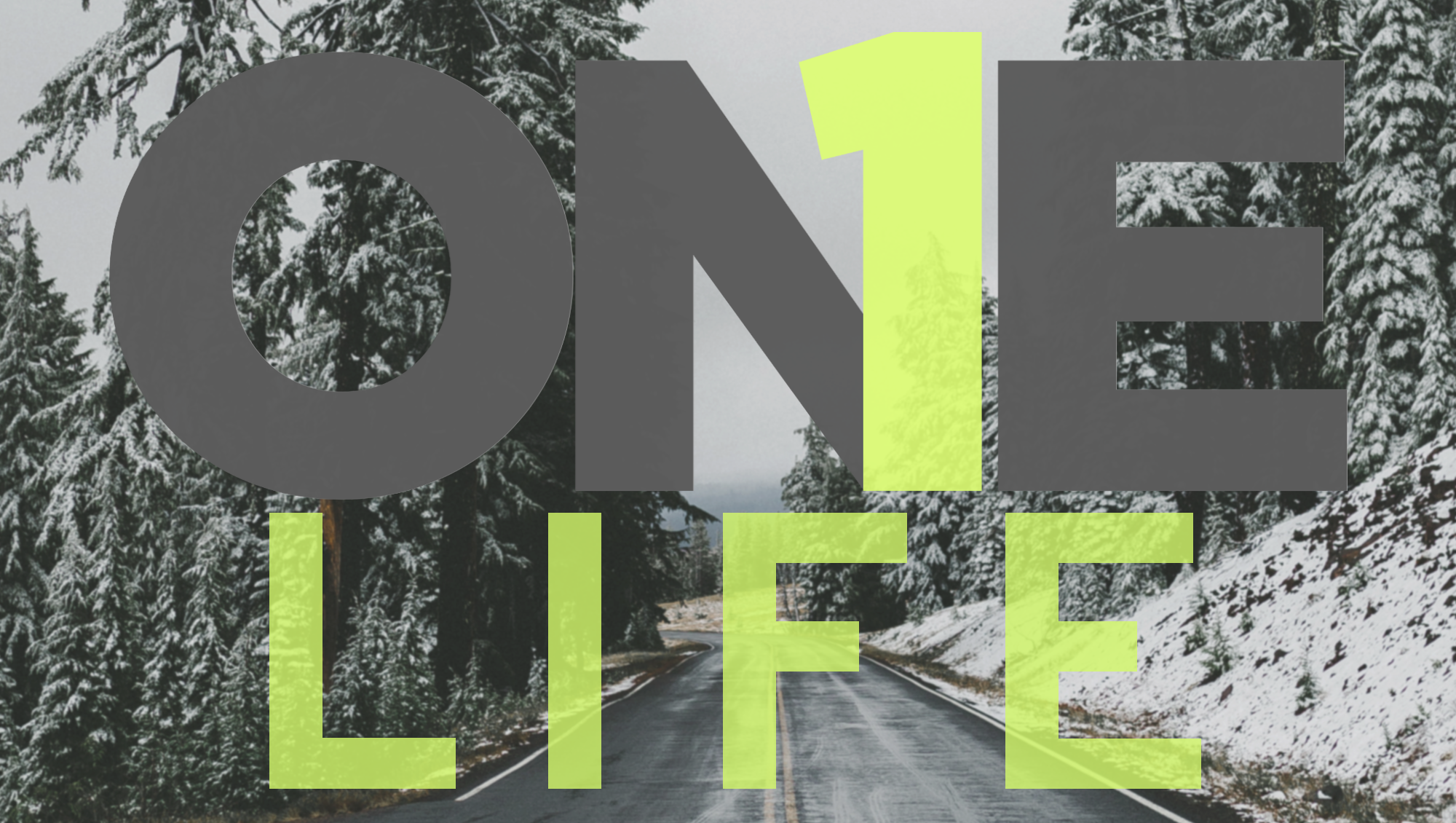 One Life 2018(1).png