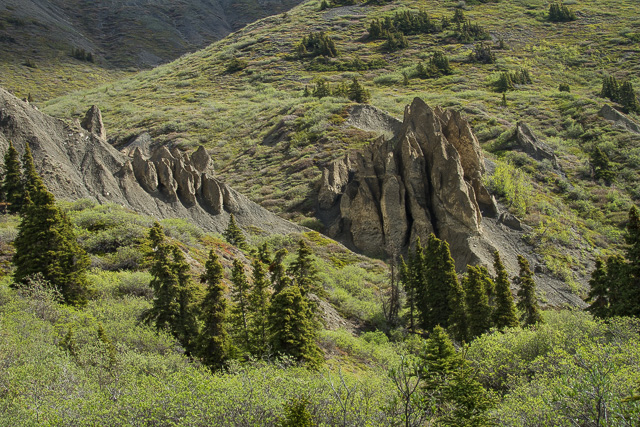 Sheep Creek trail, Kluane National Park, Yukon, Canon 7D with Canon EF 28-300mm @ 50mm, 1/25s @ f/16, ISO 100