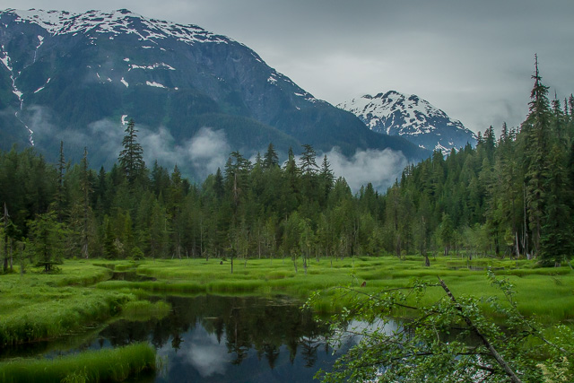 Moose Pond, Hyder, Alaska, Canon 7D with Canon EF 28-300mm @ 28mm, 1/2000s at f/8, ISO 1600
