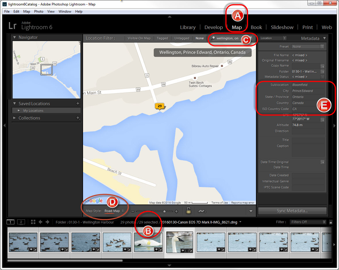 Geotagging in Lightroom: Suggested Location Metadata
