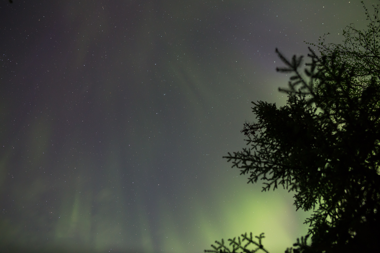 Northern Lights, Quetico Provincial Park, Ontario (10s exposure; f/2.8; ISO 1600)
