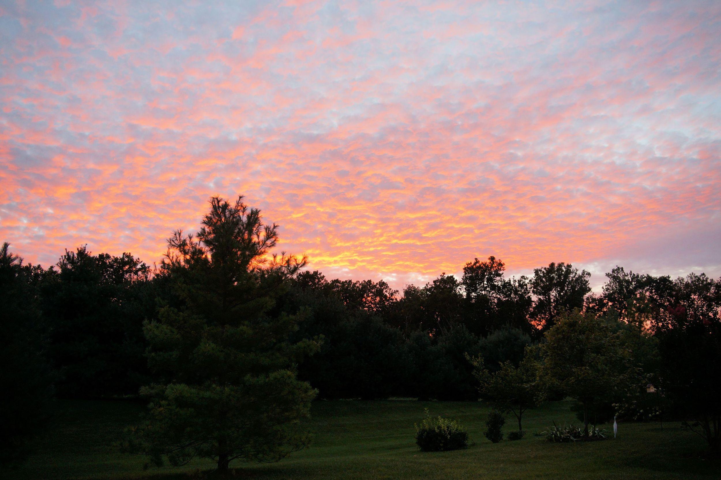 Sunset 2 perf clr.jpg