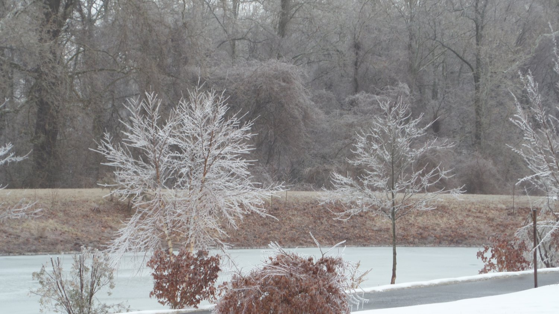Icestorm day.pond.JPG