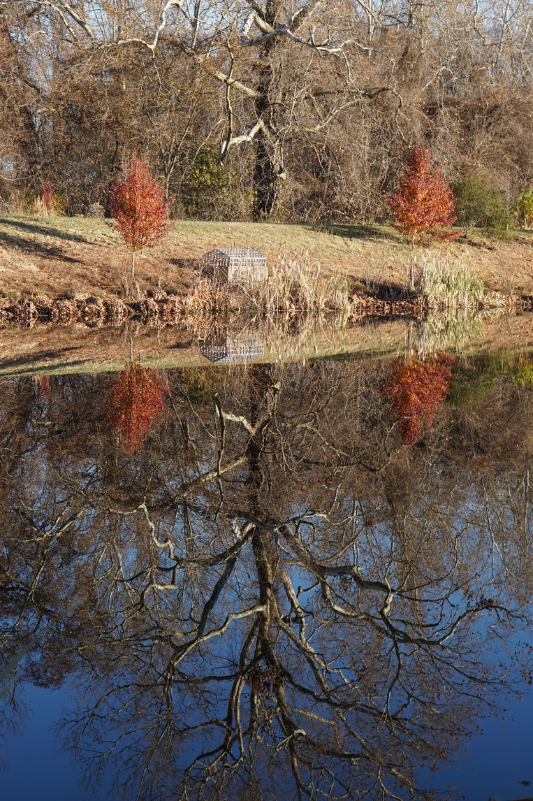 storm management pond 1 reflection 2.JPG