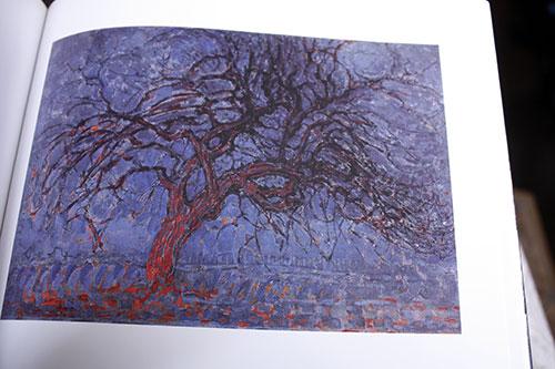bluetree.jpg
