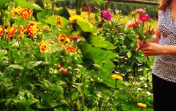picking-flowers.jpg