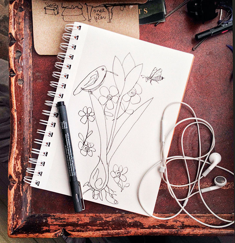 Sketch of humming bird sitting on a tulip leaf