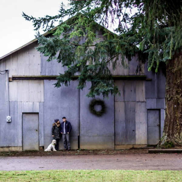 We're standing in front of our big old tin hay barn.