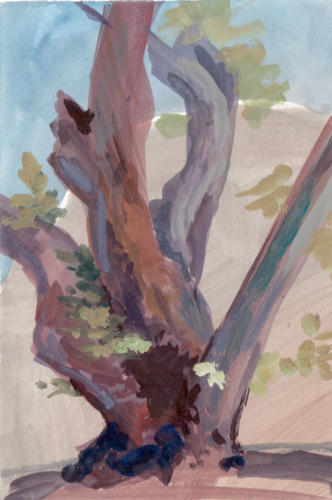 tree trunk with no underdrawing