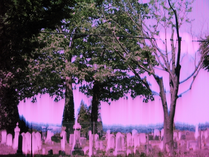 10_graveyard.JPG