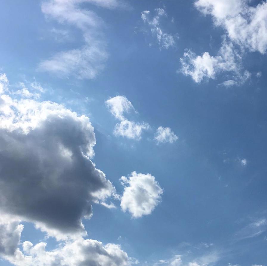 Screen Shot 2019-08-15 at 9.40.00 AM.png
