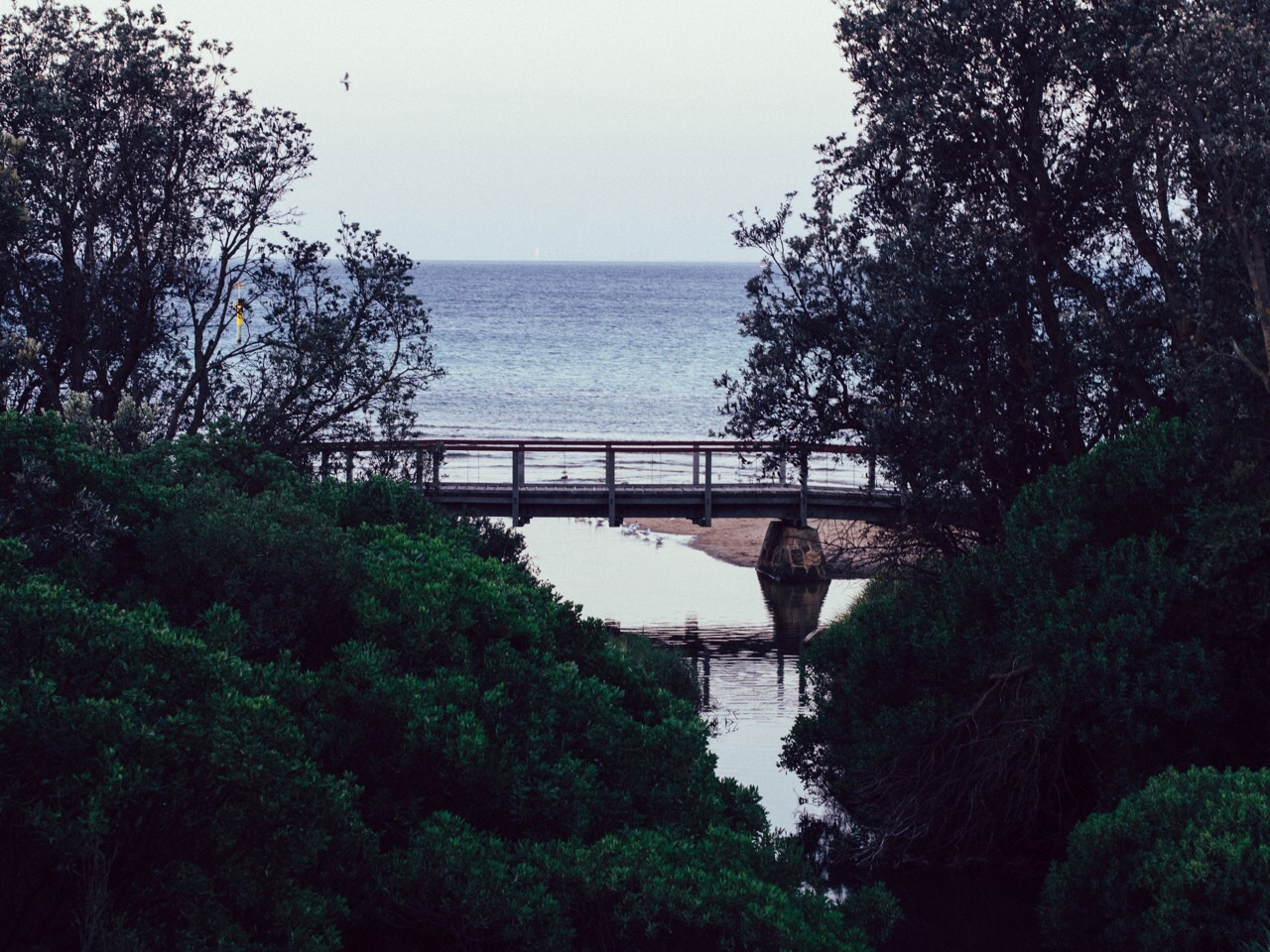 The bridge at Mills beach