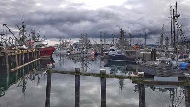"Ready, set, almost ""go"" as the fishing boats are moored three-deep waiting for the Herring Fishery to open in the Strait of Georgia across from Qualicum Beach/Parksville. . . . . #VancouverIsland #BritishColumbia #Canada #PacificNorthWest #PNW #PNWCollective #ExploreBC #HikingBC #LeftCoast #WetCoast #ExploreMore #TheGreatOutdoors #WildernessCulture #PNWwonderland #TheNWadventure #TravelBC #NorthWestisBest #BestofBC #CanadaTheNorth #ArtofVisual #StayPNW #StayandWander #MyPQB #QualicumBeachVIC #FrenchCreekHarbour #QualicumBeach #Parksville"