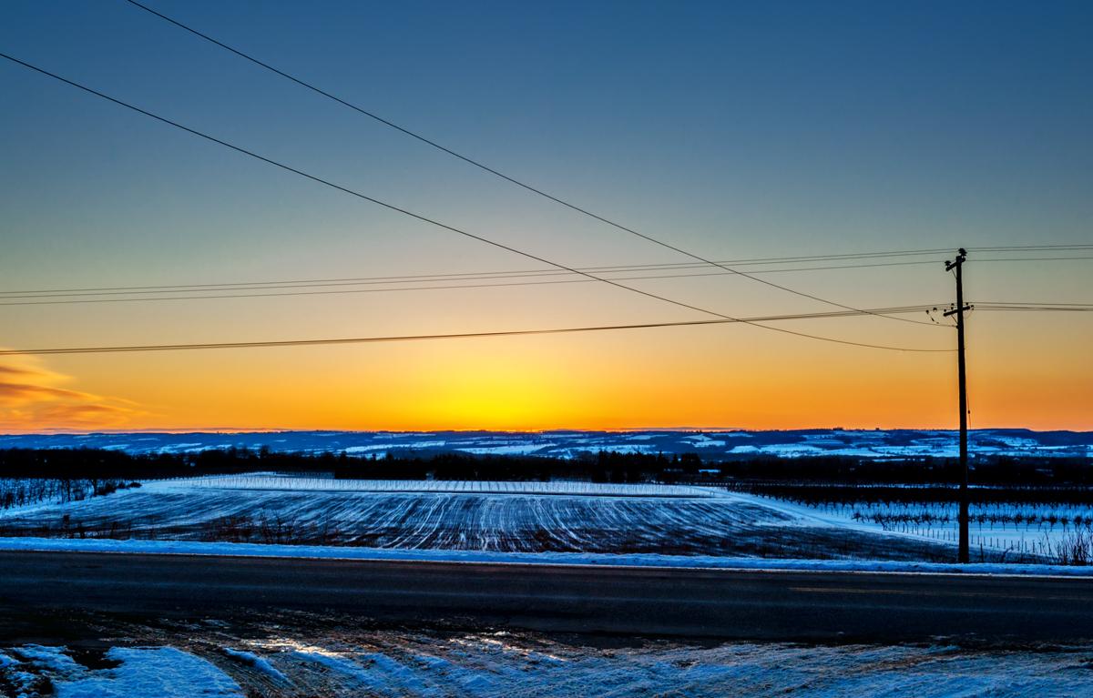 Elle Bruce - Winter Sunset Over Apple Fields - 20120219-1093