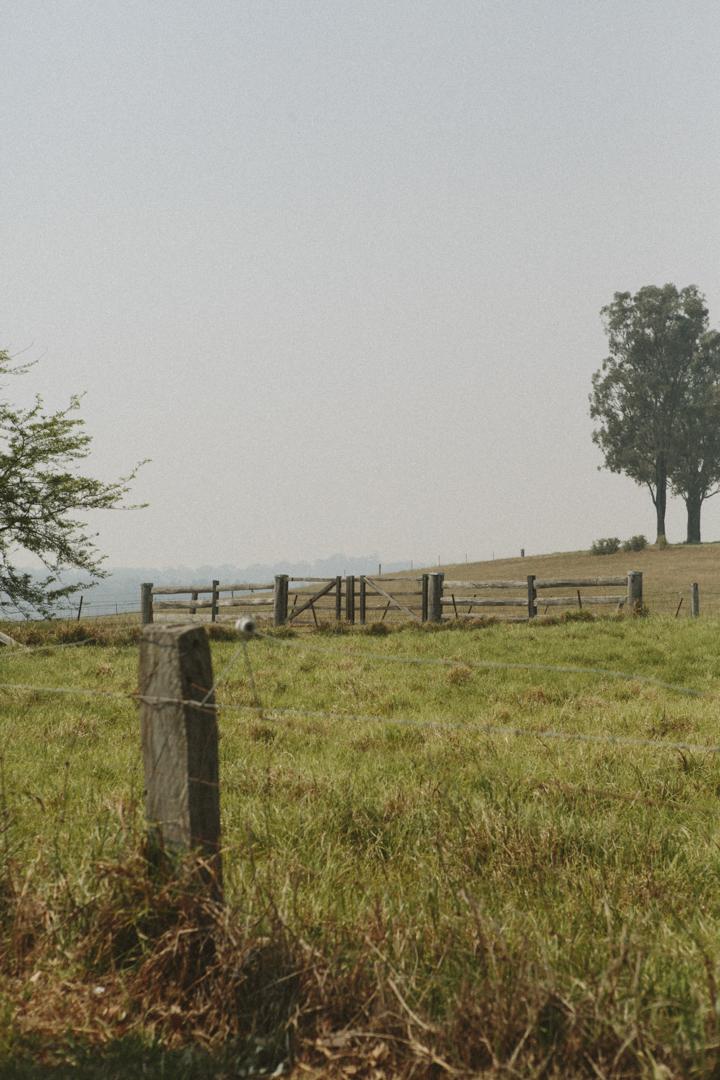 CF0004.jpg