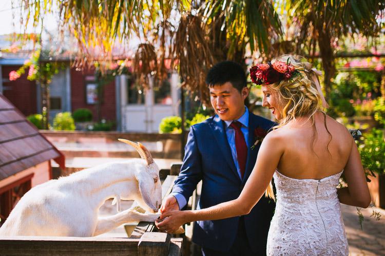 The_grounds_Sydney_Wedding_Photography_Rose_Photos001.jpg