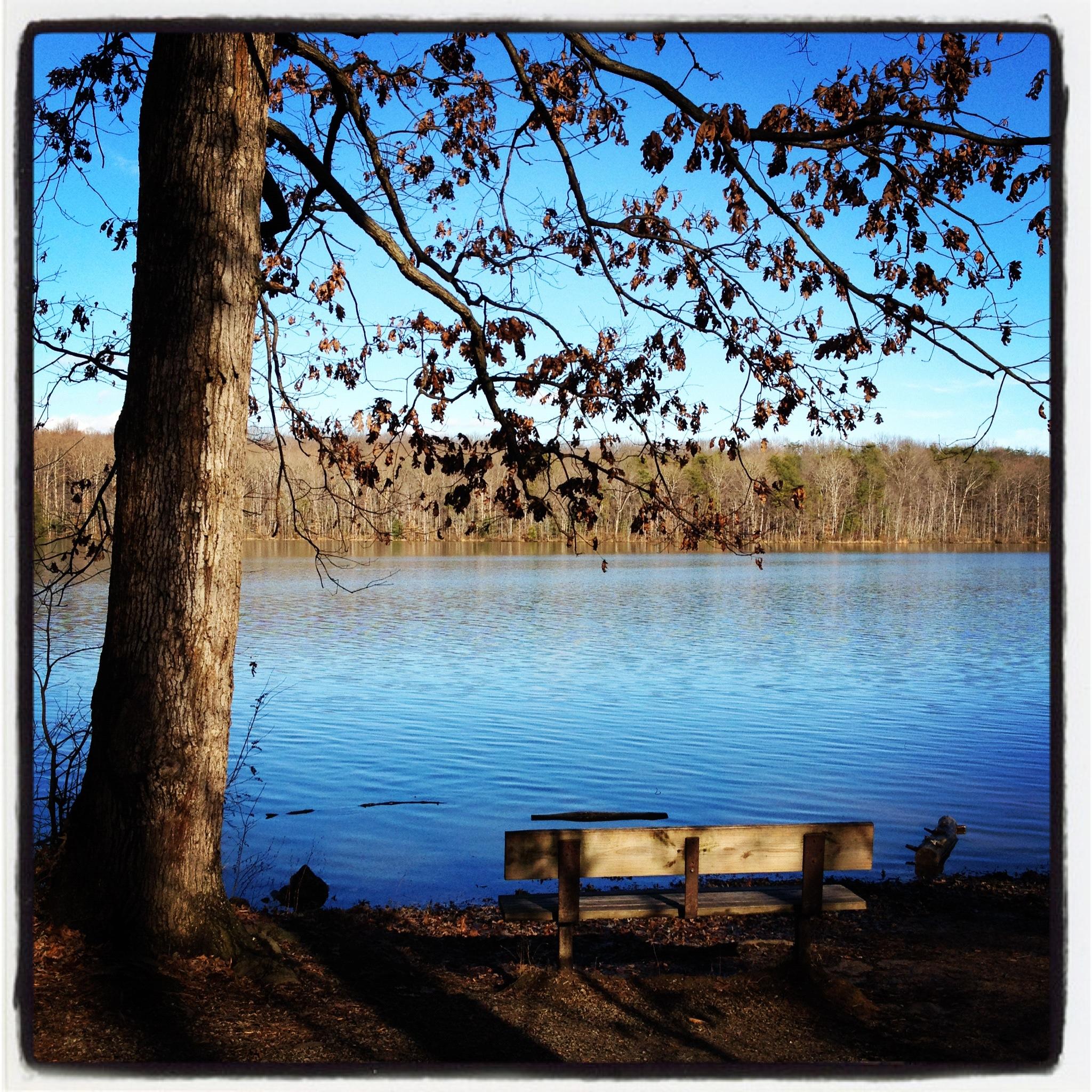 Burke Lake Park -January 2012