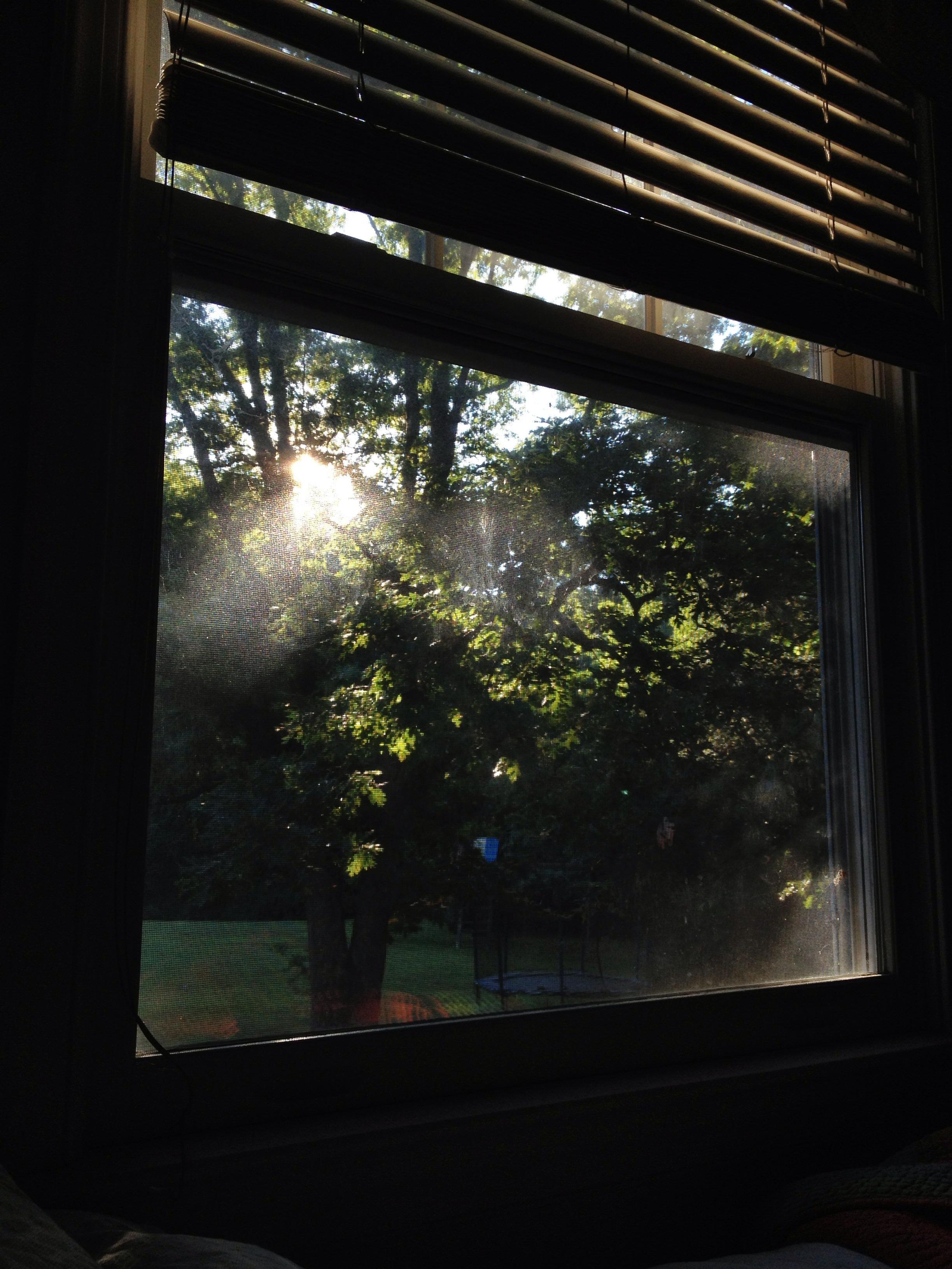 September 2013 - Early morning